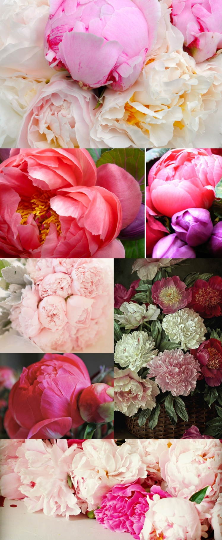 peonies, flowers, moodboard, styleboard, inspiration, pink flower, fashion, pretty, romantic